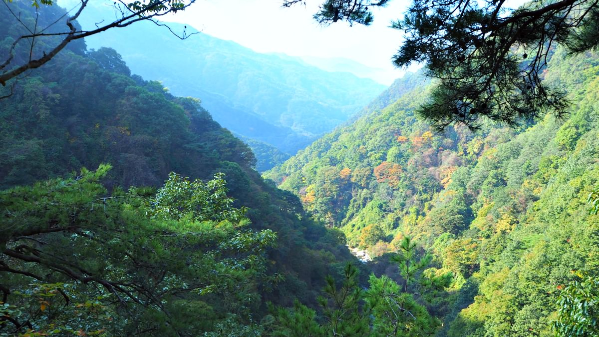 guryong-valley