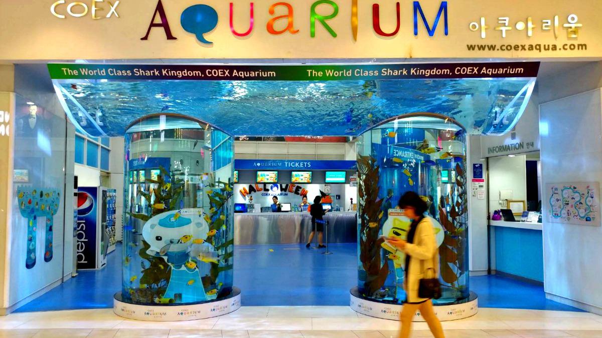 seoul-coex-aquarium
