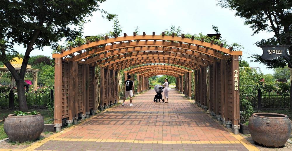 hanbat-arboretum-park