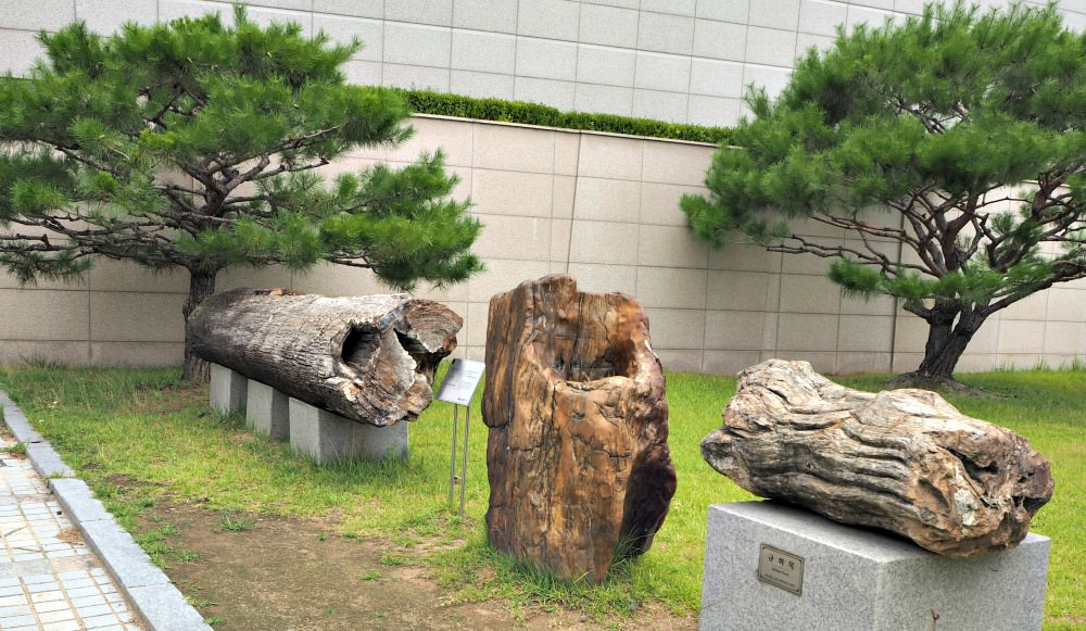 daejeon-geological-museum