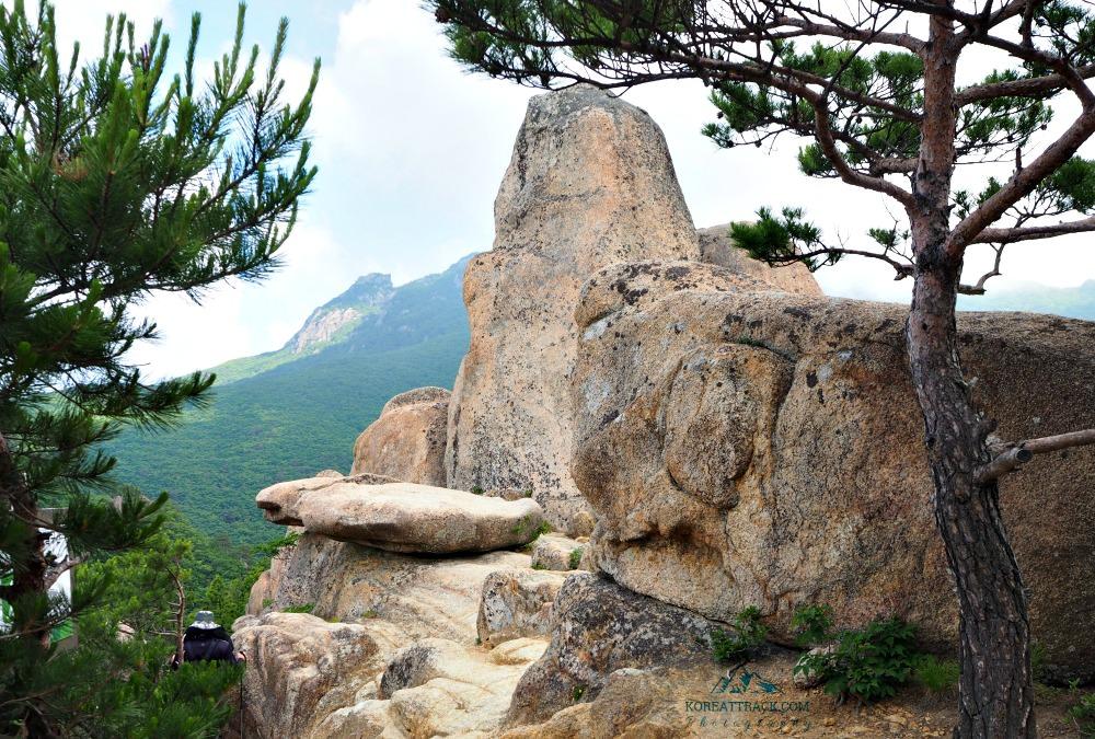 gayasan-national-park