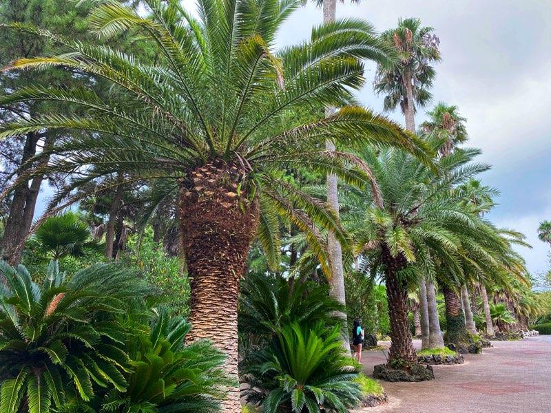 hallim-park