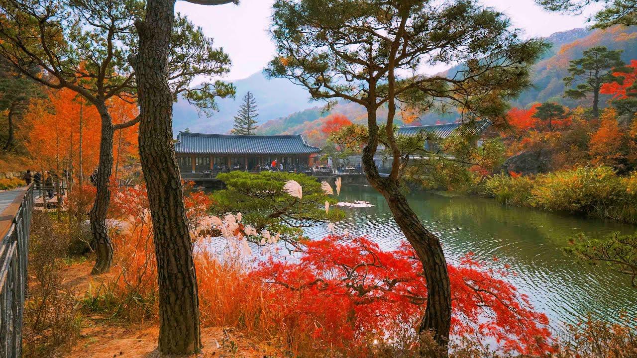 hwadam-botanic-garden