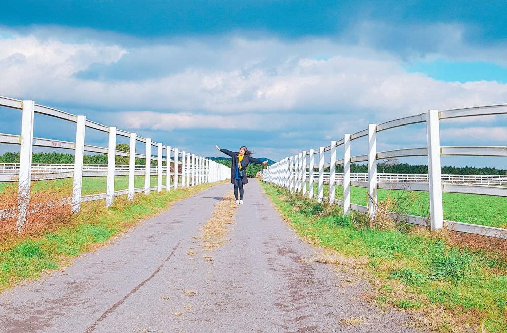 jeju-horse-racing-farm