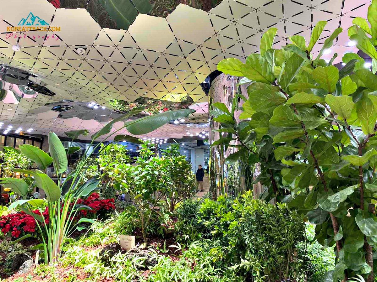 jongno-subterranean-solar-garden