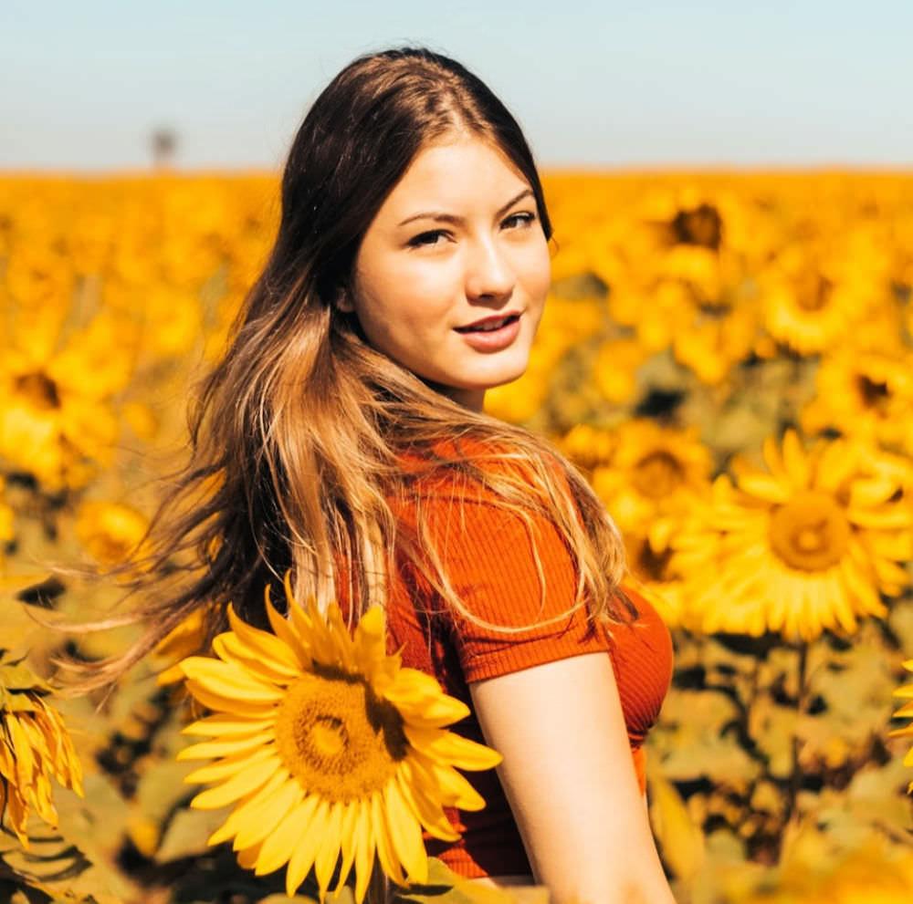 samnak-park-sunflower