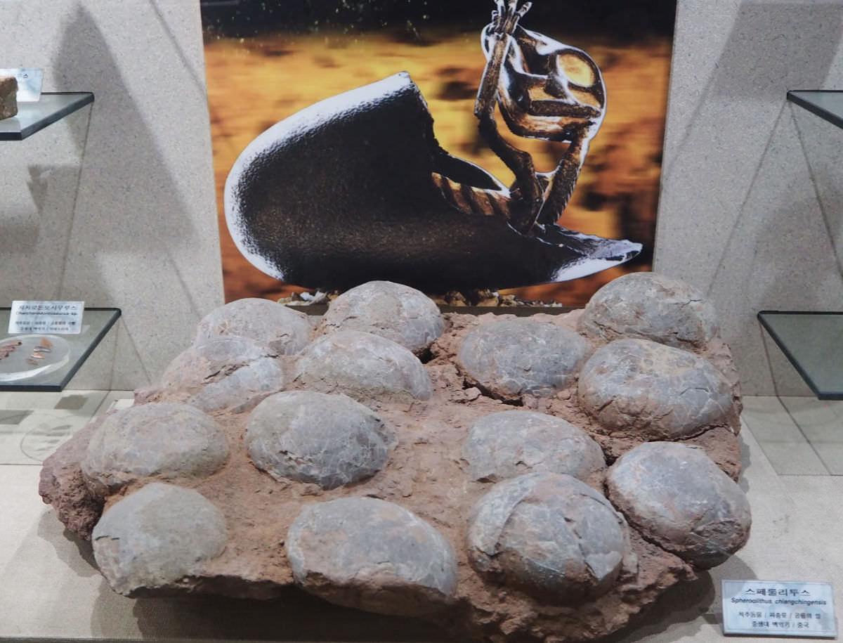 taebaek-coal-museum