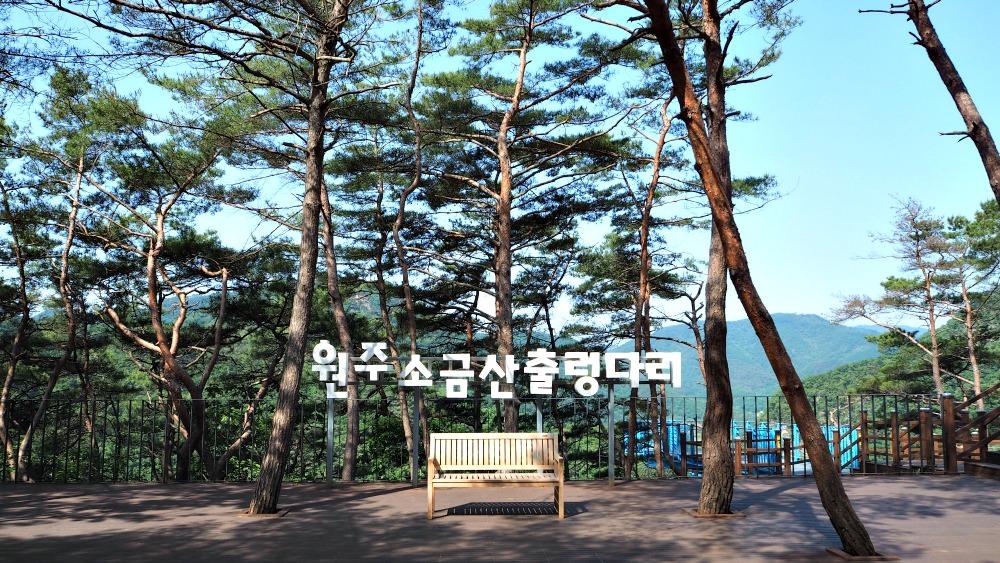 wonju-sogeumsan-rocking-bridge