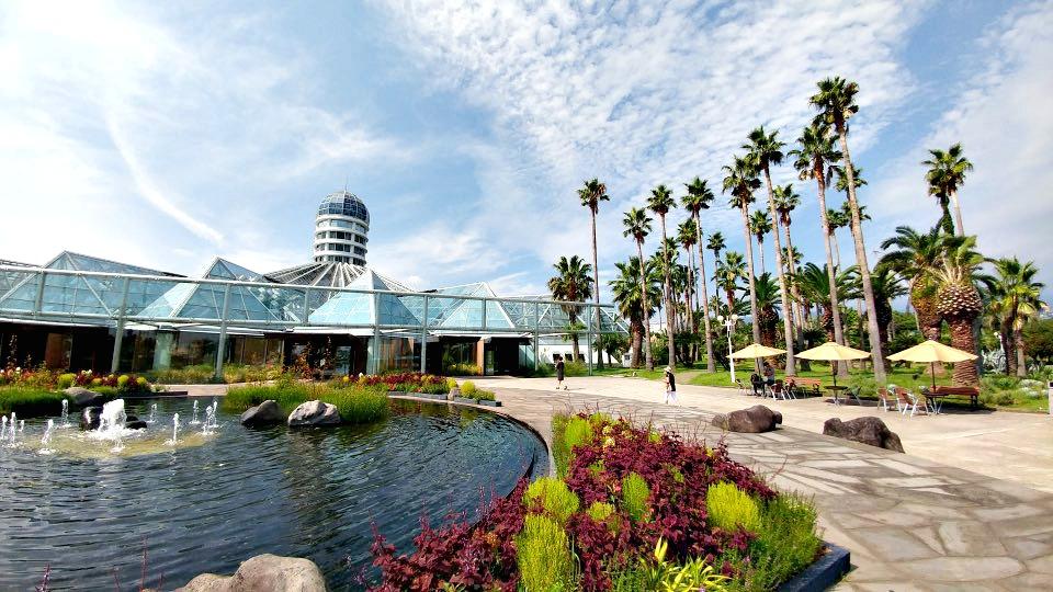 jeju-island-attractions-yeomiji-botanical-garden