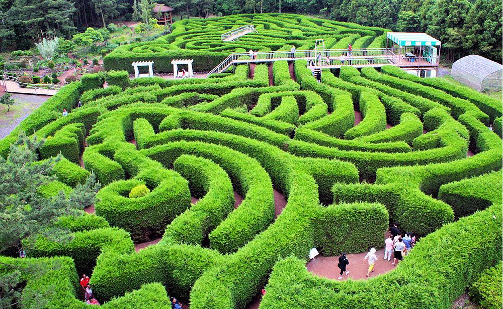 gimnyeong-maze-park