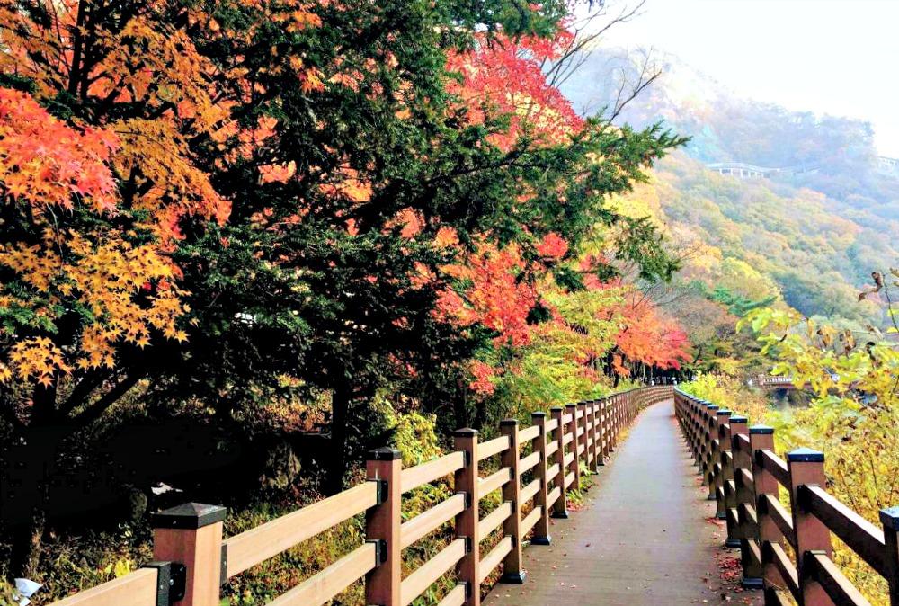 naejangsan-national-park